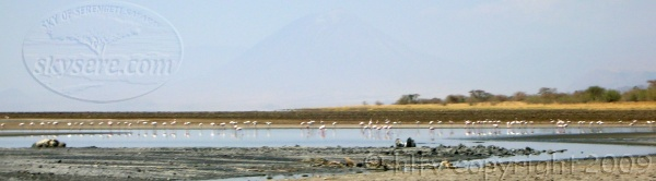 Lake Natron Northern Tanzania